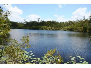 90.5hectares ( 224 acres ) midway between Gympie and Tin Can Bay .$675,000.